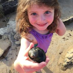 Finding treasure on the beach is all part of a great family holiday